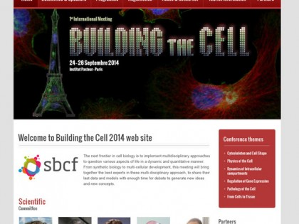 Building the Cell
